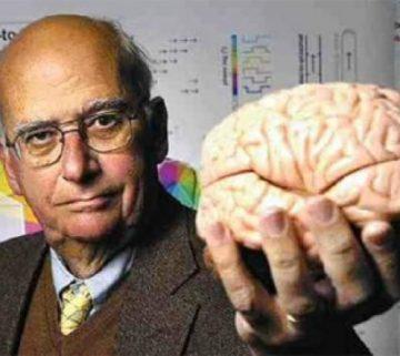 Gazzaniga brain