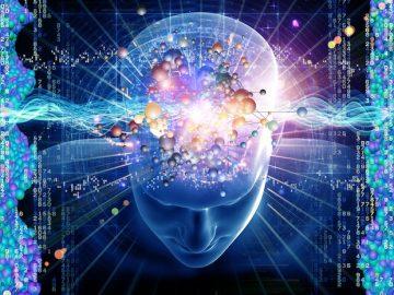 brain-increase